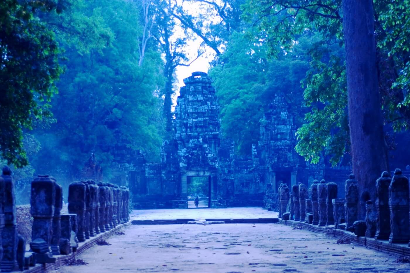 Blue toned photo of tree lined entrance across stone bridge to temple at Angkor Wat, Cambodia