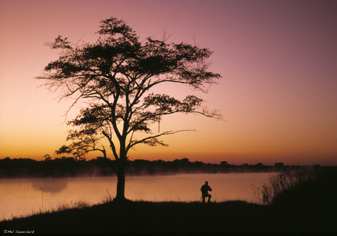 Sunrise Okavango River, Africa