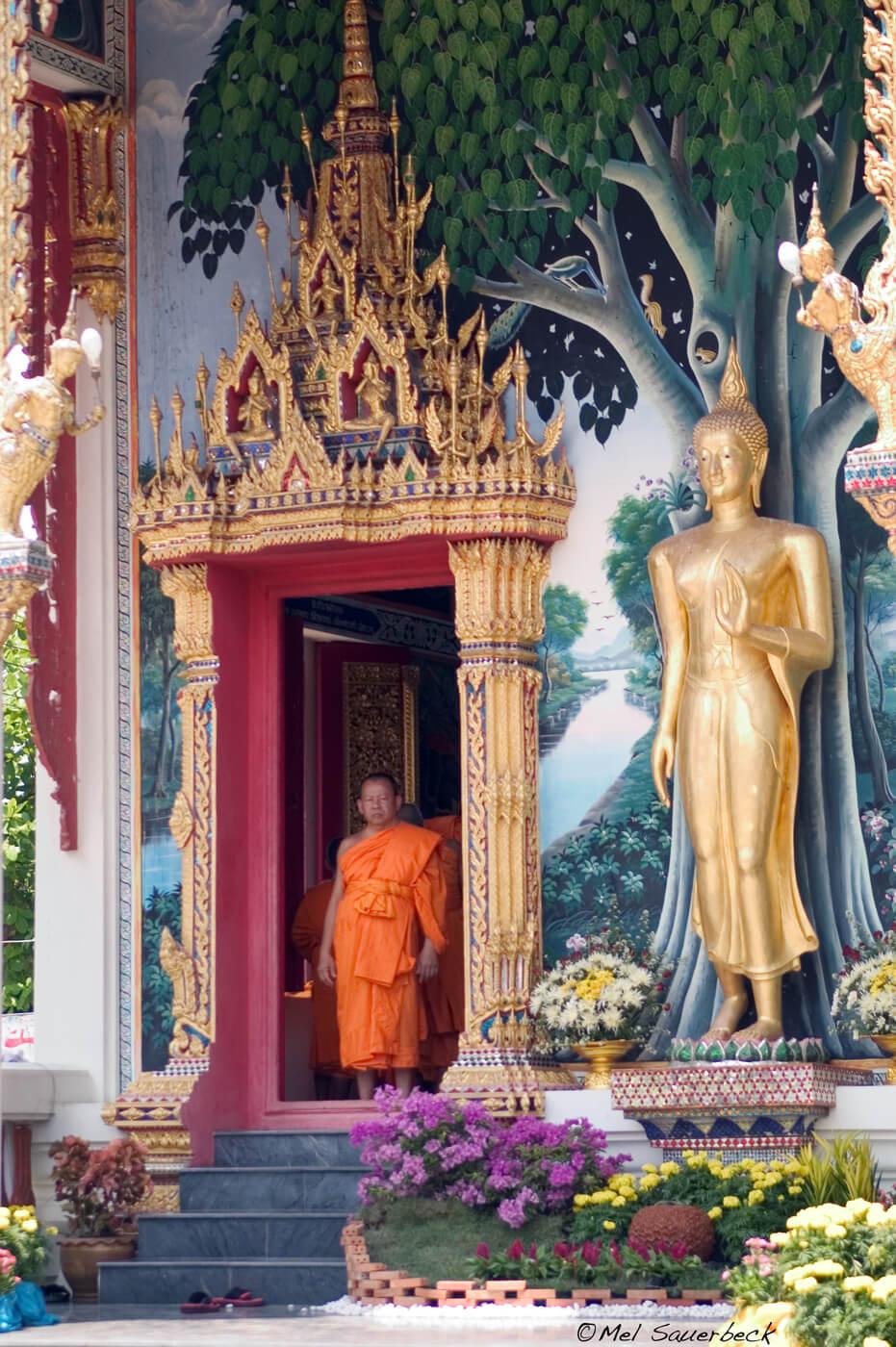Monk in temple door, Thailand